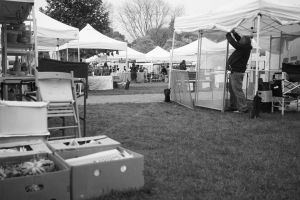 Day 133:  Crafts in the Park
