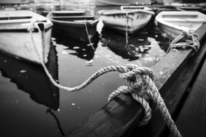 Boats tied up at Perlins;' Cove
