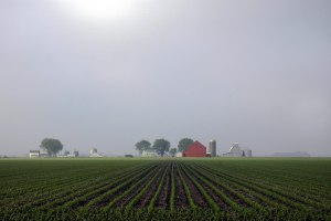 Illinois Farm